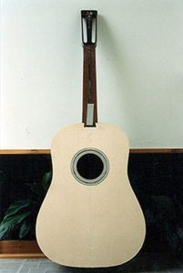 New Martin's AAA top for Martin D45