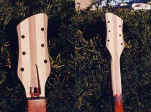 image of the headstock and neck